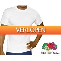 Groupdeal: 12 Fruit of the Loom T-shirts