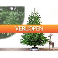 ClickToBuy.nl: Nordmann kerstbomen