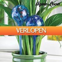 CheckDieDeal.nl 2: 2 x glazen waterbollen voor planten