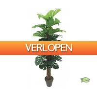 Warentuin.nl: Monstera kunstplant