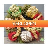 Warentuin.nl: Voederkrans vogels