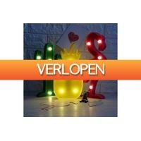 Dailygrabdeals.com: Flamingo, kaktus of ananas LED-lamp