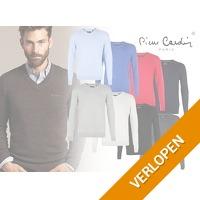 Pierre Cardin heren pullover