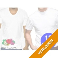 12 Fruit of the Loom T-shirts