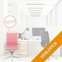 Lederen design bureaustoel