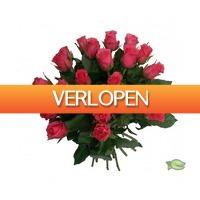 Warentuin.nl: Boeket roze rozen