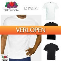 Dealwizard.nl: 12-pack Fruit of the Loom T-shirts