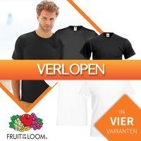 Euroknaller.nl: 12 x Fruit Of The Loom T-shirts