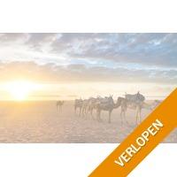 Heerlijke zonvakantie in Agadir