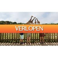 ActieVandeDag.nl 2: Safaripark Beekse Bergen