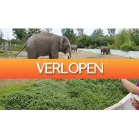 ActieVandeDag.nl 2: Familiedierentuin Dierenrijk