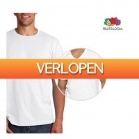 Koopjedeal.nl 1: 12-pack Fruit Of The Loom T-shirts
