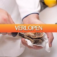 Dealbanana.com: RVS oestermes