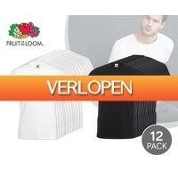 Voordeelvanger.nl: 12-pack Fruit of the Loom T-shirts