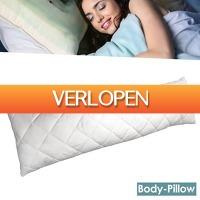 Wilpe.com - Home & Living: Body-Pillow Slaapkussen 3-in-1