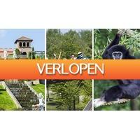 ActieVandeDag.nl 2: Dagje All-in Mondo Verde