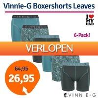 1dagactie.nl: 6-pack Vinnie-G Leaves boxershorts