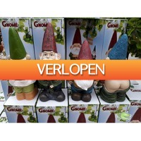 Warentuin.nl: FA ZO tuinkabouter