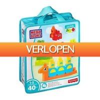 HelloSpecial.com: Veiling: Mega Bloks First Builders
