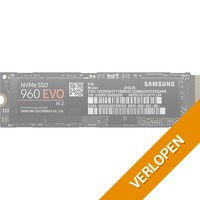 Samsung 960 EVO 250 GB solid state drive