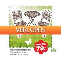 Warentuin.nl: Romantisch Bistrosetje Roos