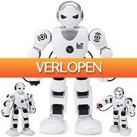 Uitbieden.nl: Bestuurbare 2.4GHz robot