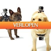 Gadgetknaller: GoPro hondenharnas