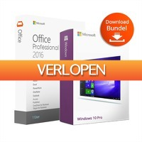 HelloSpecial.com: Veiling: Microsoft Office Professional Plus 2016 + Windows 10 Professional (downloaden)