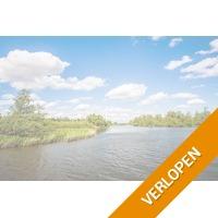3 dagen 4*-hotel nabij Breda en De Biesbosch