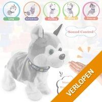 Veiling: elektronische hond