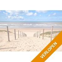 3 dagen bij het strand van Noordwijk