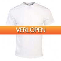 TipTopDeal.nl: 12-pack Fruit of the Loom T-shirts