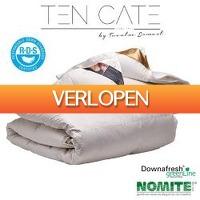 One Day Only: Donzen 4-seizoenendekbed + gratis kussen(s)