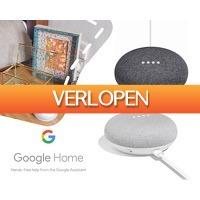 1DayFly: Google Home Mini slimme speaker