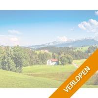 Zwitsers Alpenpanorama