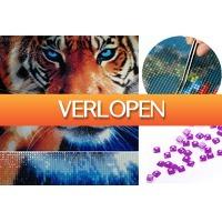 VoucherVandaag.nl: Diamond painting dieren