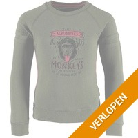 Me & My Monkey sweater