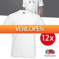 Pricestunter.nl: 12 x Fruit of the Loom T-shirts