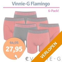 Vinnie-G boxershorts Flamingo 6-pack