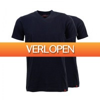 Onedayfashiondeals.nl 2: 2 x Pierre Cardin T-shirts