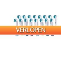 ActievandeDag.nl 1: 16 x opzetborsteltjes