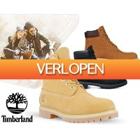 1DayFly: Timberland 6-inch boots