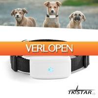 Wilpe.com - Elektra: Huisdier GPS tracker compact