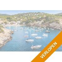 Geniet 8 of 15 dagen van het zonovergoten Ibiza