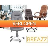 1Dayfly Extreme: Breazz Director bureaustoel