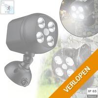 Light Tsunami sensor LED spot