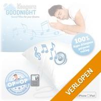 Relaxte Soundpillow