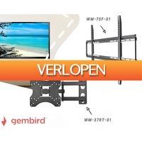 1DayFly Tech: Gembird TV muurbeugels