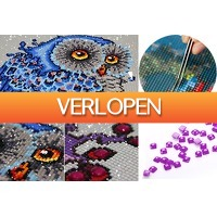 VoucherVandaag.nl: Diamond painting