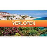 Travelberry: Zonvakantie Fuerteventura